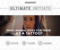 Divergent - C