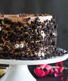 Dark Chocolate Cake with Nutella Buttercream | undefined