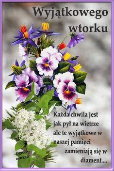 Good Morning Funny, Morning Humor, Birthday Wishes, Plants, Maze, Motto, Disney, Pictures, Fotografia