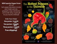 Hottest peppers in the world poster