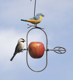 Speared Fruit Hanging Bird Feeder with Bluebird or Cardinal Motif Best-Selling Garden A from Wind & Weather on Catalog Spree Metal Bird Feeders, Bird House Feeder, Hanging Bird Feeders, Buy Birds, Bird Boxes, Wind Spinners, Backyard Birds, Wire Art, Fruit