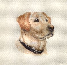 An Original counted cross stitch kit by Fido Stitch Studio. This 'mini' stitch kit could be completed in just a few hours. This kit contains everything you need to complete your project. Cat Cross Stitches, Counted Cross Stitch Patterns, Cross Stitch Designs, Cross Stitching, Cross Stitch Embroidery, Labrador Retrievers, Retriever Puppies, Simple Cross Stitch, Cross Stitch Animals