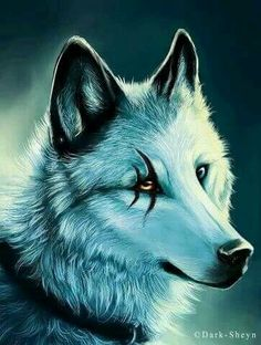 blood wolf moon meaning native american - photo #45