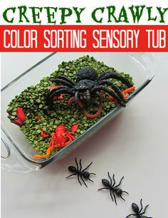 Simple Halloween ( or bug ) themed sensory tub activity for preschool. For additional resources come join us at:  http://www.smartappsforspecialneeds.com