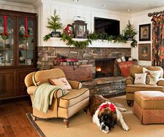 i love the coziness of this and not to mention the big dog.