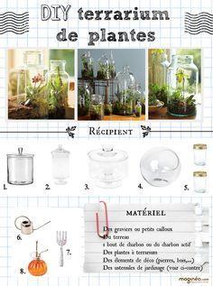 Dossier : Offrir Des Fleurs Pour La Fête Des Mères | Terrarium, Art Floral  And Composers