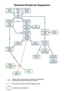 1000+ images about Arms & Hands on Pinterest | Tennis ...