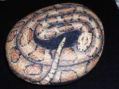 Amber Corn Snake Painted Rock