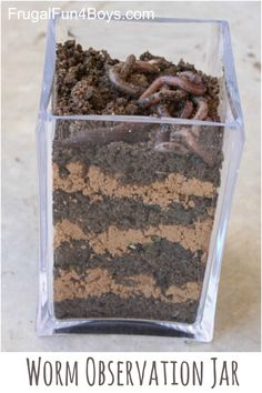 Make a Worm Observation Jar - This is a great way to learn about what worms do for the earth!