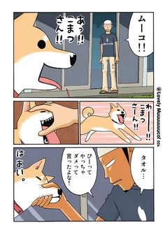 いとしのムーコ/みずしな孝之 - モーニング・アフタヌーン・イブニング合同Webコミックサイト モアイ