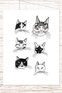 East End Prints: Cats Wall Art by J. Camilleri at Urban Outfitters