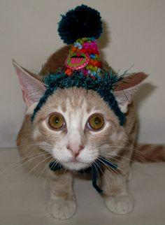 Crocheted Kitten Birthday Party Hats or Petite Cats Birthday Party Hats XXSmall