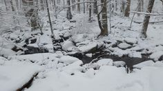 Winter in the Smoky Mountains is something to see!