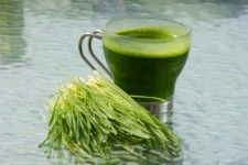 wheatgrass...who knew!  I just bought some of this yesterday to add to a planter.