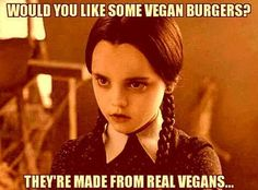 Christina Ricci as Wednesday Addams Sarcastic Quotes, Qoutes, Funny Quotes, Funny Memes, Hilarious, Addams Family Quotes, Dark Romance, Adams Family, Wednesday Addams