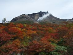 It's Mt.Nasu at tochigi, Japan.  The Mt wear Various colors in every Fall.