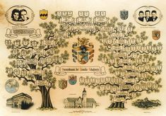 Family Tree Poster, Family Tree Art, Family Tree Designs, Tree Structure, Heritage Scrapbooking, Scrapbooking Ideas, Family Genealogy, Mini Albums, Art Journal Pages