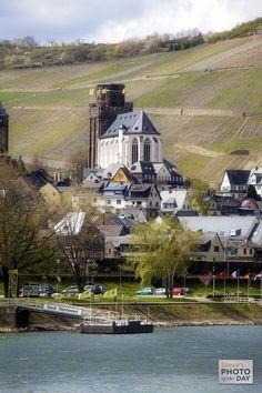 Vneyards on the Rhine River, Germany (photo by Michael Oriti)