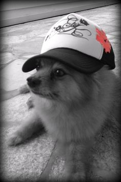 Lani wearing our new G Hats... Lots of great colors. www.facebook.com/gingerandkoiboutique