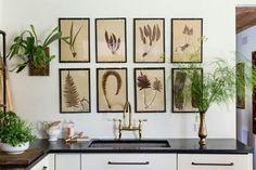 Wonderful framed botanicals in kitchen - Lauren Liess