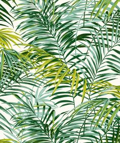 Green Palm Springs Stoff W. 280 cm: Möbelstoffe von kreative-deco - chloé pige - - Green Palm Springs Stoff W. Palm Springs, Tropical Art, Tropical Flowers, Tree Leaves, Plant Leaves, Leave In, Tropical Pattern, Of Wallpaper, Botanical Prints