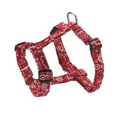 Le harnais bandana rouge disponible sur My-Animalerie.com. Original et tendance, le harnais chien est de taille réglable passant du L au XXL ! La parure laisse, collier et harnais style bandana rouge est à retrouver sur notre animalerie en ligne. Disponible en plusieurs couleurs.  #harnais #chien #animalerie #laisse #bandana #foulard #animaux #animal