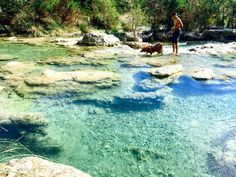 Garner State Park / Texas / Texas Swimming / Frio River / Texas Camping / Golden Retriever / Camping with dogs