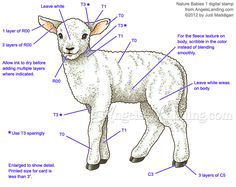 Copic Coloring Guide: Lamb from Nature Babies 1 by Crafts - Cards and Paper Crafts at Splitcoaststampers