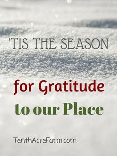 Tis the Season for Gratitude to our Place. How well do you know your place? How well do you know your holiday traditions?
