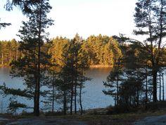Tunti Helsingistä ja olet keskellä luonnon rauhaa Tammisaaressa | Visit South Coast Finland