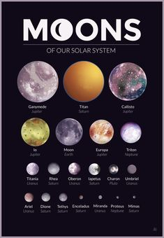 Moons of our Solar System – A gallery-quality graphic design art print by Alexandria Neonakis for sale. Moons of our Solar System – A gallery-quality graphic design art print by Alexandria Neonakis for sale. Cosmos, Space Planets, Space And Astronomy, Hubble Space, Space Telescope, Space Shuttle, Astronomy Facts, Astronomy Quotes, Astronomy Tattoo