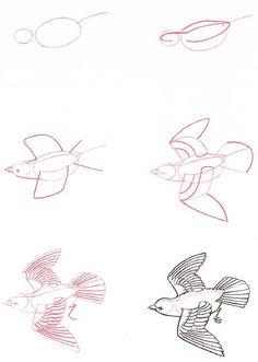 Learn to draw: Bird in flight