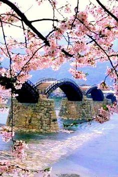 Iwakuni-shi Yamaguchi-ken Japan kintai bridge