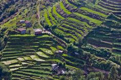 Banaue Rice Terraces of Banaue Benguet 8 Reasons The Philippines Is The Best Tropical Destination No One Ever Talks About