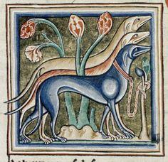 Bodleian Library, MS. Ashmole 1511, Folio 25r Three elegant dogs stand ready.
