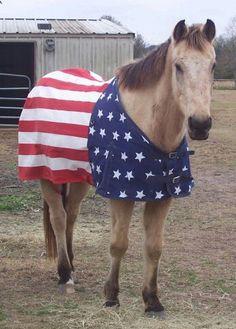 American flag horse blanket