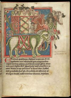 Miniature of an elephant and castle; from a bestiary, England, mid 13th century, Harley MS 4751
