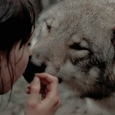 Anabel with Ethan's wolf Story Inspiration, Character Inspiration, Half Elf, The Ancient Magus Bride, She Wolf, Character Aesthetic, Arya Stark Aesthetic, Greek Gods, Winter Is Coming