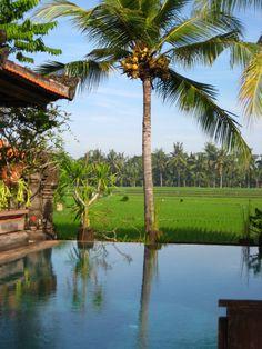 Bali's natural beauty...