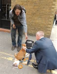 street cat named bob - - Yahoo Image Search Results