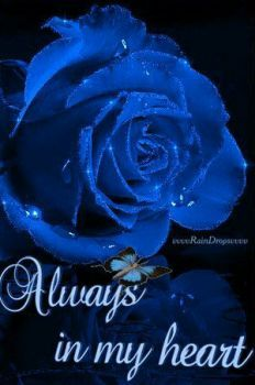 Blue Rose, the color of my heart without you. Flowers Gif, Beautiful Rose Flowers, Beautiful Gif, Love Rose, Blue Flowers, Love You Gif, Love You Images, Butterfly Gif, 3d Rose