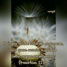 #provérbios #sabedoria #retidão #quemsemeiacolhe #boasemente #boarecompensa #Deusfiel #rosiigiil