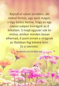 Rejtsél el valaki szívében...♡ Eternal Love, Einstein, Everything, Quotations, Motivational Quotes, Life Quotes, Spirit, Messages, Thoughts