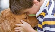 Animal assisted therapy uses trained animals to enhance an individual's physical, emotional and social well-being, which improves self-esteem, reduces anxiety and facilitates healing. It can also greatly improve hyperactivity and impulsivity in children and adolescents. #health #dogs #horses
