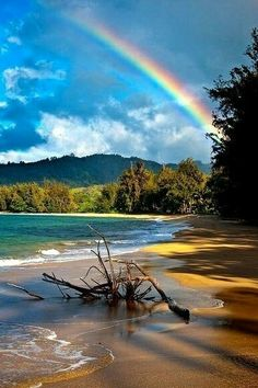 Rainbow in Kauai, Hawaii. No wonder they call Hawaii the rainbow state! Dream Vacations, Vacation Spots, Kauai Vacation, Places To See, Places To Travel, Travel Destinations, All Nature, Nature Images, Nature Pictures