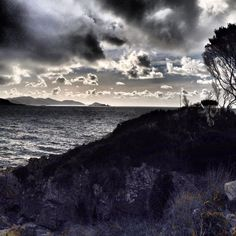Boat Harbour Tasmania Australia by @anne20y