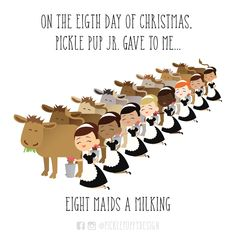 On the eighth day of Christmas, Pickle Pup Jr gave to me... eight maids a milking.