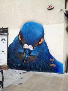 Blue bird is watching #streetart