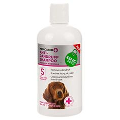 GNC Pets Medicated Anti-Dandruff Shampoo ** Read more at the image link. (This is an affiliate link and I receive a commission for the sales)