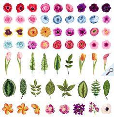 DIY Flower Pack Vol.1 - Illustrations - 2. Cute Watercolor / Hand Drawn Flower Clip Art Design